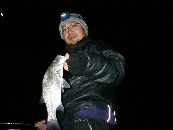 取りあえず、海の魚。_c0153951_15234829.jpg