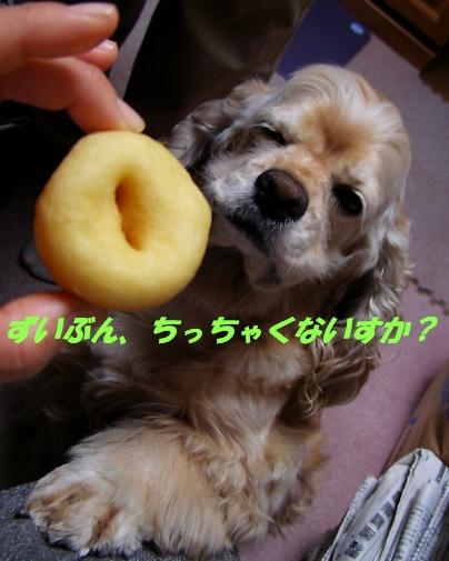 b0067012_2262092.jpg
