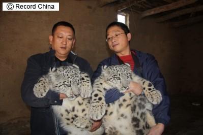 中国の動物ってやつは_c0025115_22104574.jpg