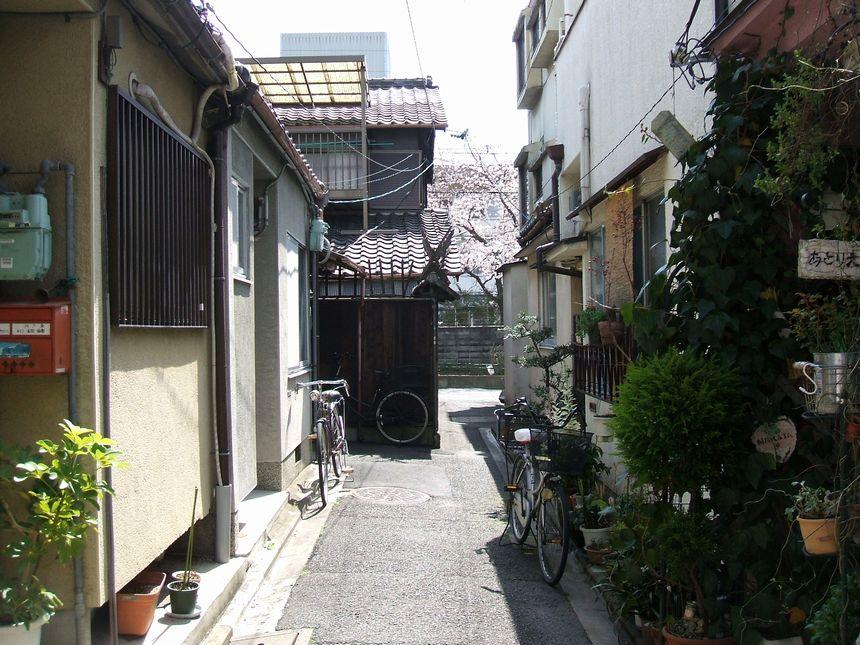 「番外・・・名残りの桜」_d0133024_10154580.jpg