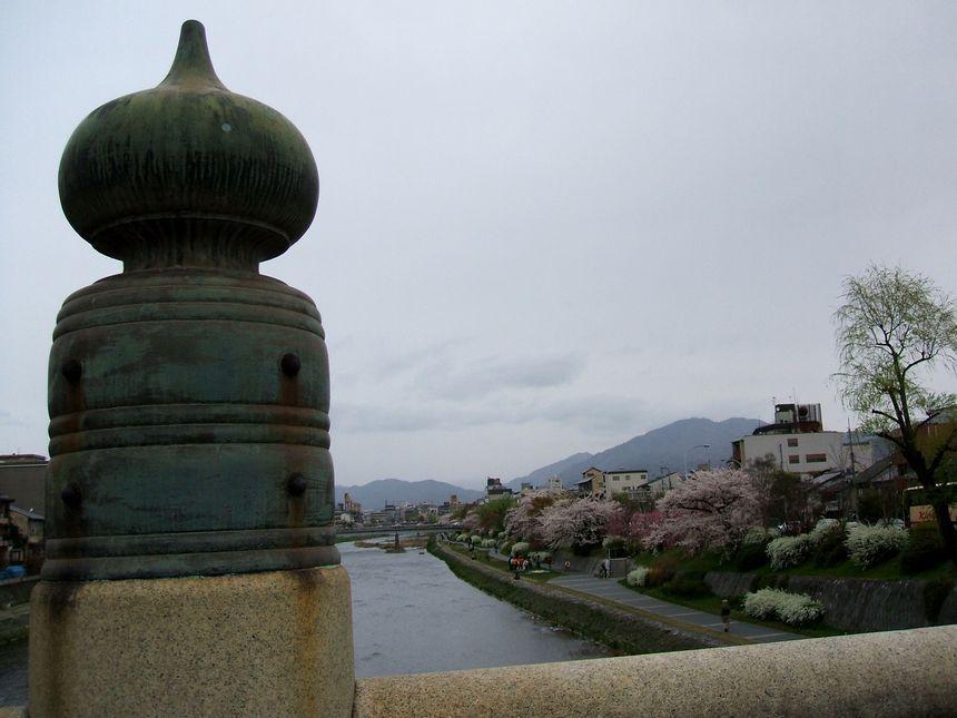 「番外・・・名残りの桜」_d0133024_10162046.jpg