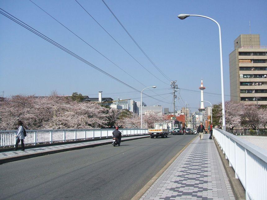 「番外・・・名残りの桜」_d0133024_10165094.jpg