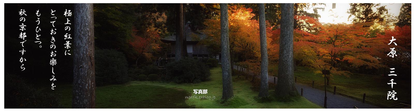 そうだ 京都、行こう。_f0021869_11255797.jpg
