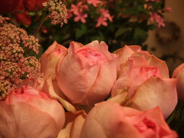 オークリーフ(がんばってお店の花も)_f0049672_1811417.jpg
