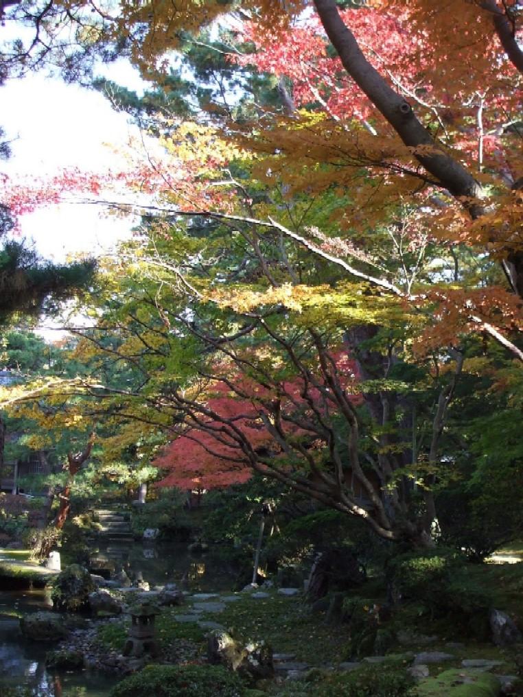 紅葉が見頃です☆_e0135219_16162657.jpg