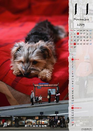 カレンダーが発売されました!」_c0024345_836015.jpg