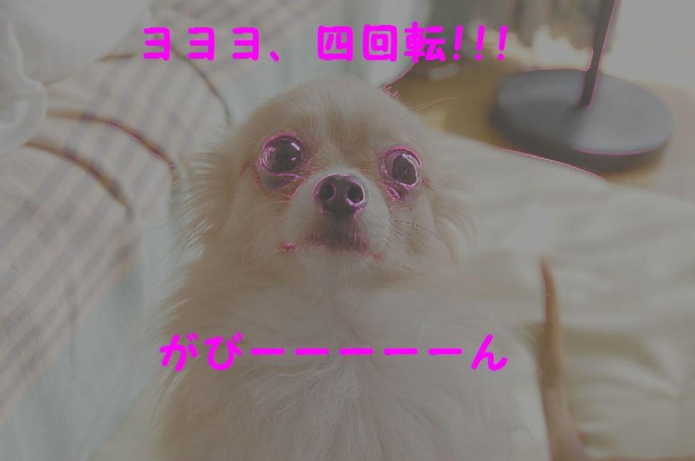 b0112758_1054243.jpg