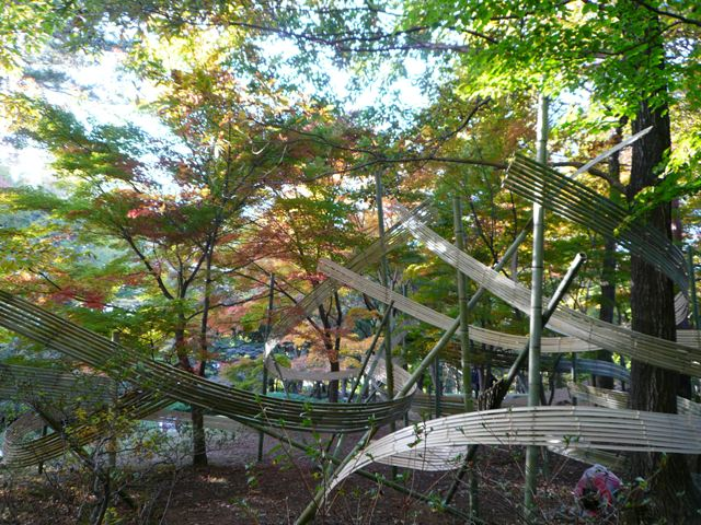 2008 モスミン イルミネーション @ 武蔵丘陵森林公園_c0134862_9552039.jpg