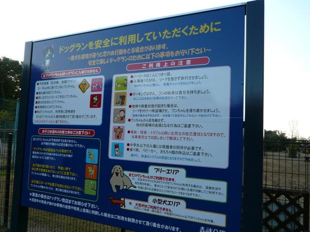 2008 モスミン イルミネーション @ 武蔵丘陵森林公園_c0134862_9581866.jpg