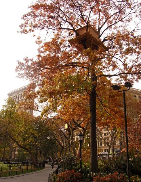 都市緑化プロジェクトでも、パブリックアート MillionTreesNYC_b0007805_13561247.jpg