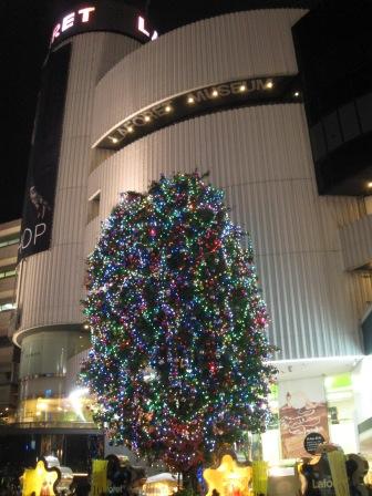 ニコライバーグマンのクリスマスツリー+表参道界隈のクリスマスツリー_e0091712_318104.jpg