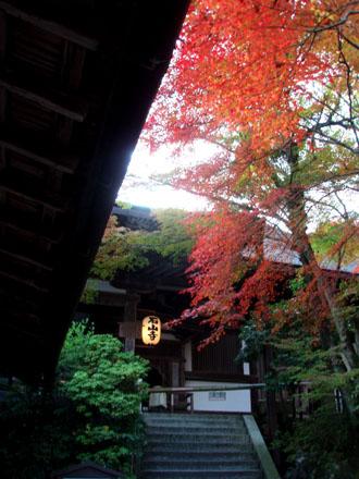 紅葉探訪 石山寺_e0048413_21414381.jpg