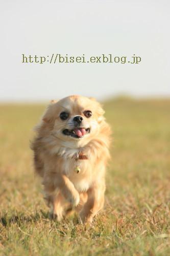 b0132016_1871245.jpg