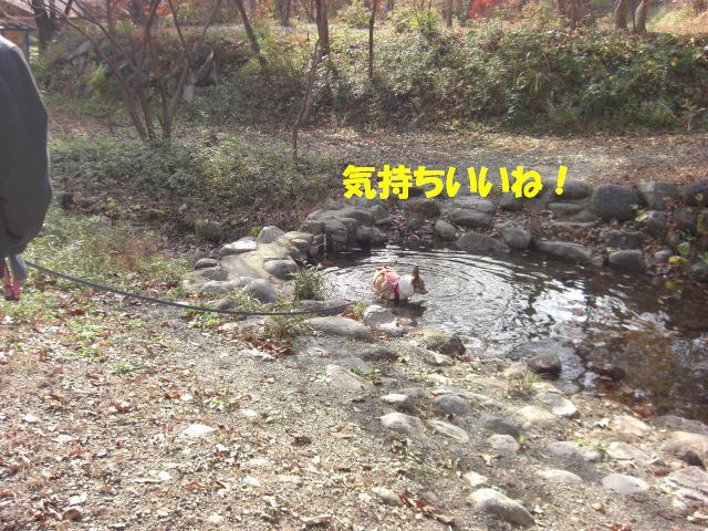 f0182121_16171094.jpg