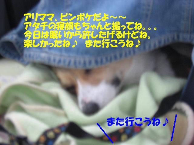 f0182121_17213435.jpg