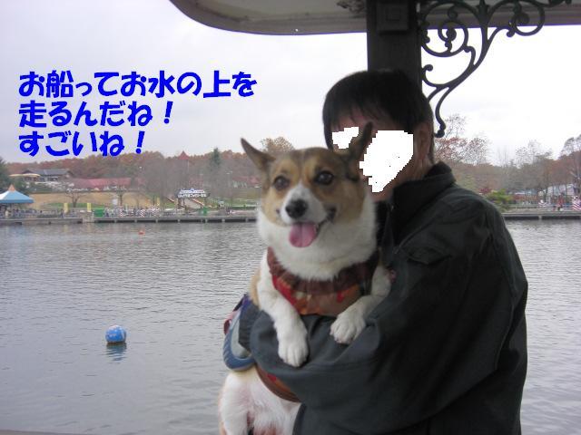 f0182121_17329100.jpg