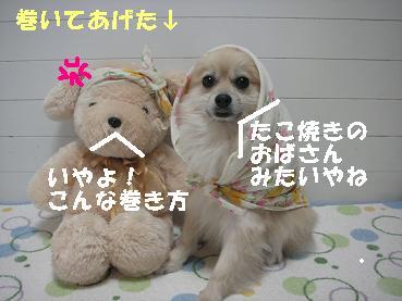 c0179136_21321021.jpg