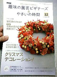 「趣味の園芸ビギナーズ&やさいの時間」12月号_b0136144_4485731.jpg