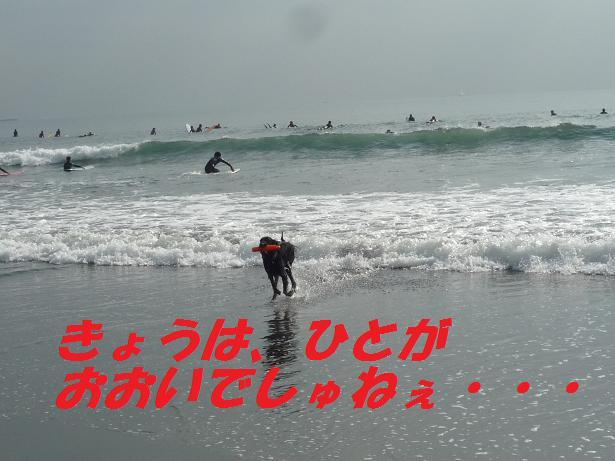 a0104464_1272742.jpg