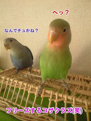 b0127466_126398.jpg