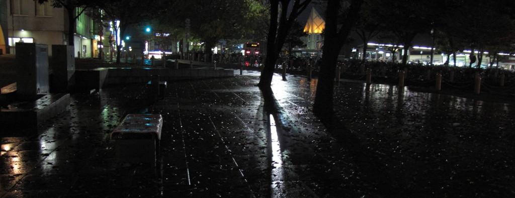 08年11月県展写真部懇親会_c0129671_21224580.jpg