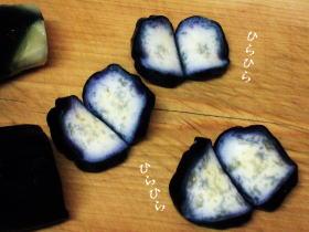 京都_d0091671_8531296.jpg