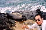 ガラパゴス。ノースセイモア島は平地です。青足カツオ鳥とグンカン鳥のコロニー島でした。(第134編)_e0003272_23105918.jpg