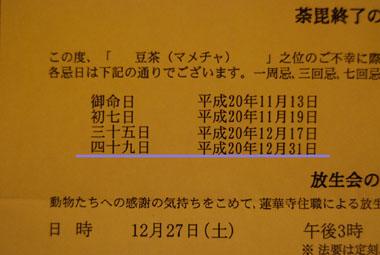 b0091373_3391100.jpg