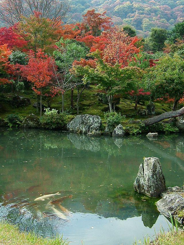 秋の京都旅行_e0022175_23174185.jpg