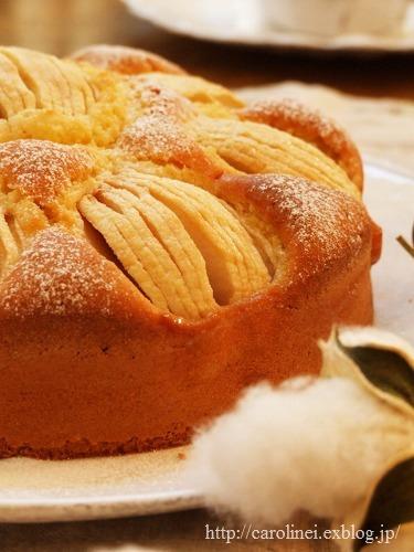 りんごのケーキ_d0025294_177873.jpg