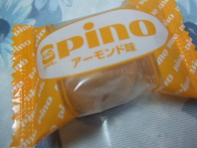 ピノ 3種_f0076001_2147955.jpg