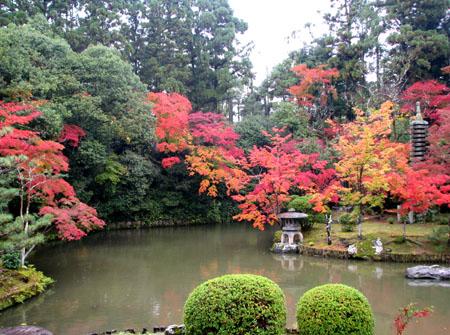紅葉を訪ねて 清涼寺_e0048413_20242726.jpg