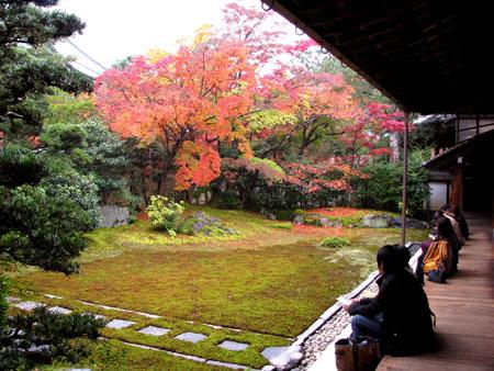紅葉を訪ねて 清涼寺_e0048413_2025856.jpg