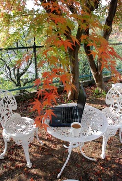 ガーデン・カフェ&オフィス_e0103024_1327228.jpg