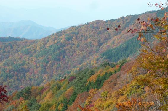 11月6日(木)尾城山サミット_c0092937_5374870.jpg