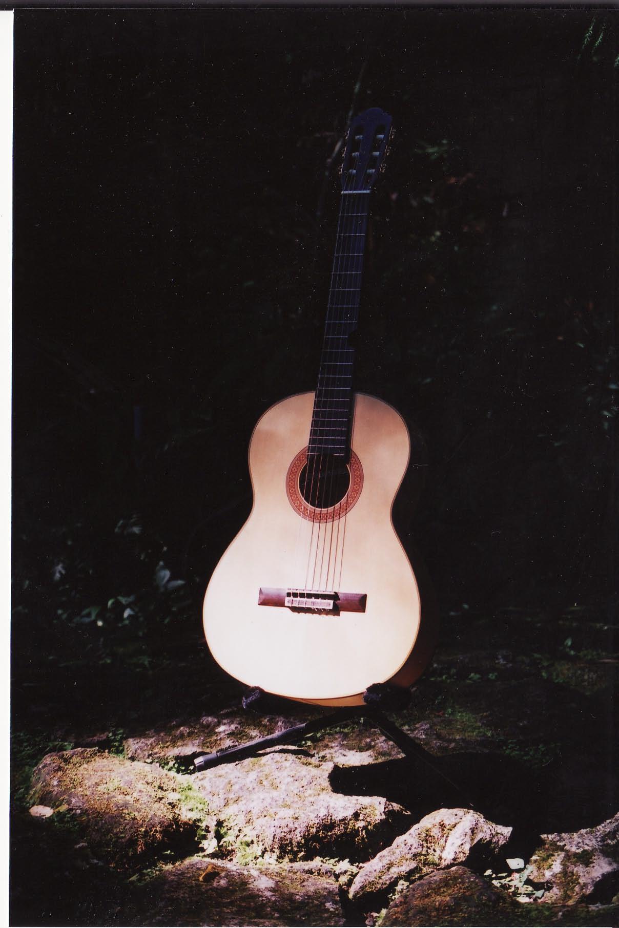 旅するギター_e0156251_722854.jpg