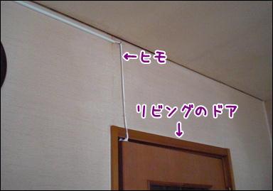 d0139352_213925.jpg