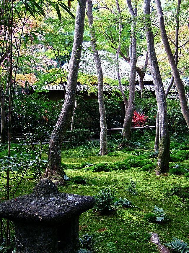 秋の京都旅行_e0022175_21384593.jpg