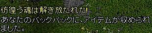 b0096491_40152.jpg