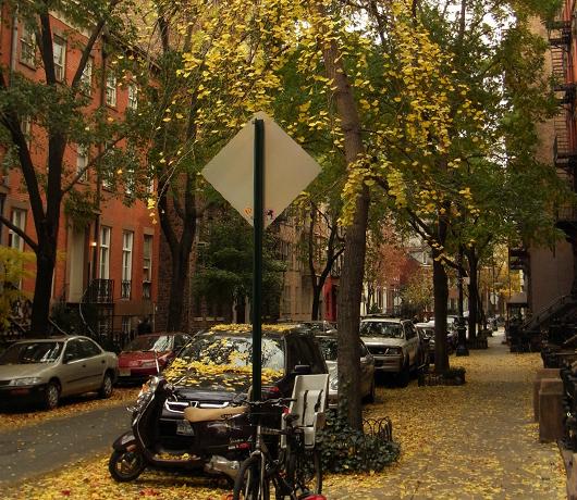 ブリーカー・ストリート沿いの色_b0007805_2004335.jpg