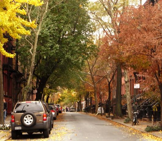 ブリーカー・ストリート沿いの色_b0007805_207726.jpg