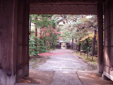 清水園の赤いじゅうたん_e0135219_1052447.jpg