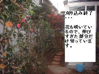f0031037_200565.jpg