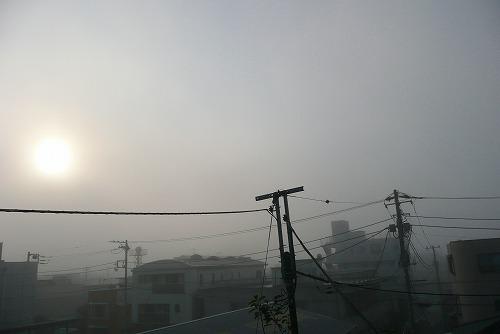 晩秋の風景_c0087349_426216.jpg
