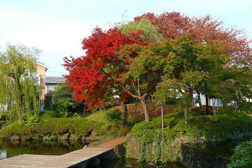 晩秋の風景_c0087349_4264651.jpg