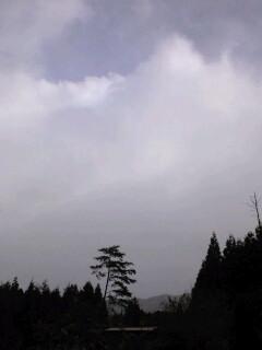 はっ?!! 初雪だわ_f0071456_19375762.jpg