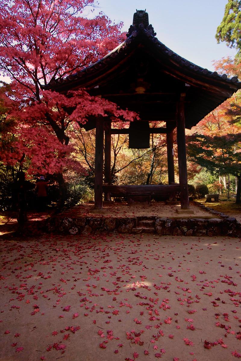 京都 西明寺 2_f0021869_12115190.jpg