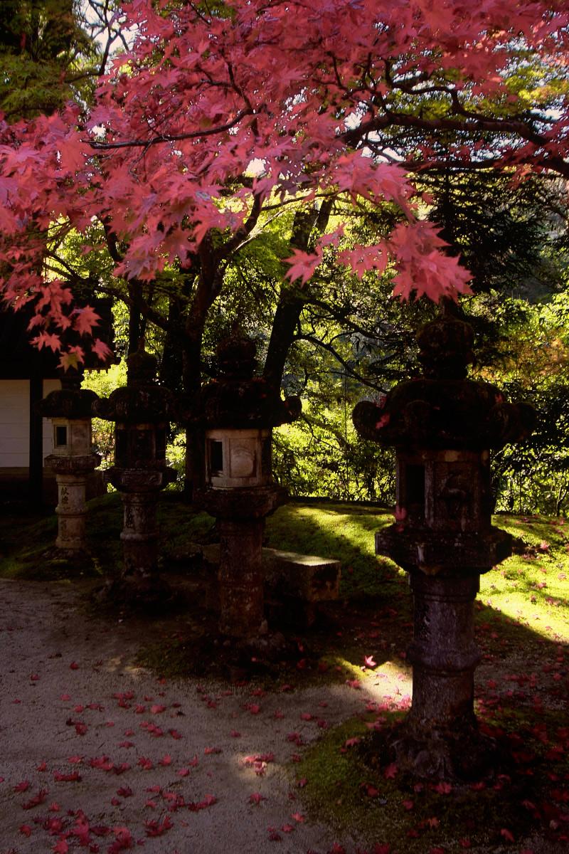 京都 西明寺 2_f0021869_12122018.jpg