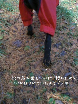 b0000885_221016.jpg