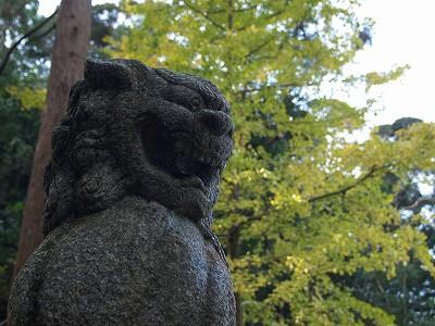 近所の神社_f0197985_20341827.jpg